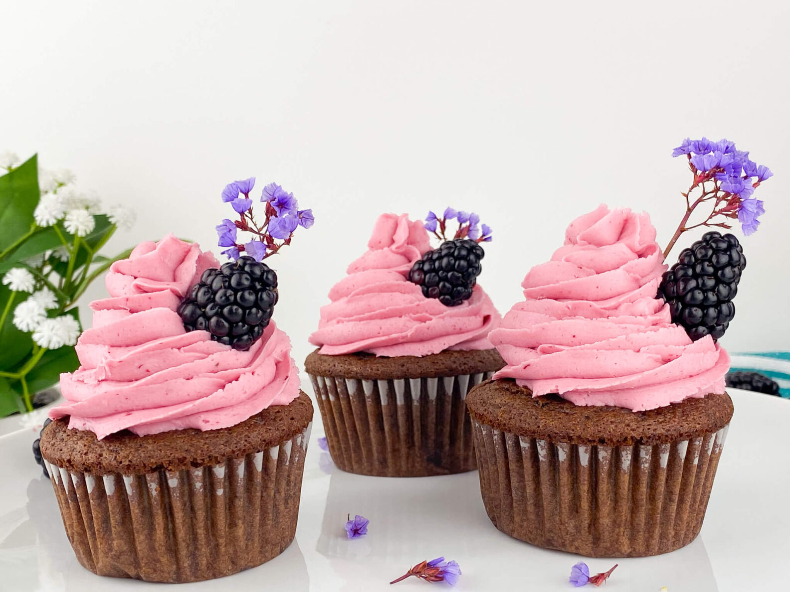 Kate's Safe and Sweet - Blackberry Frosted Chocolate Cupcakes Trio