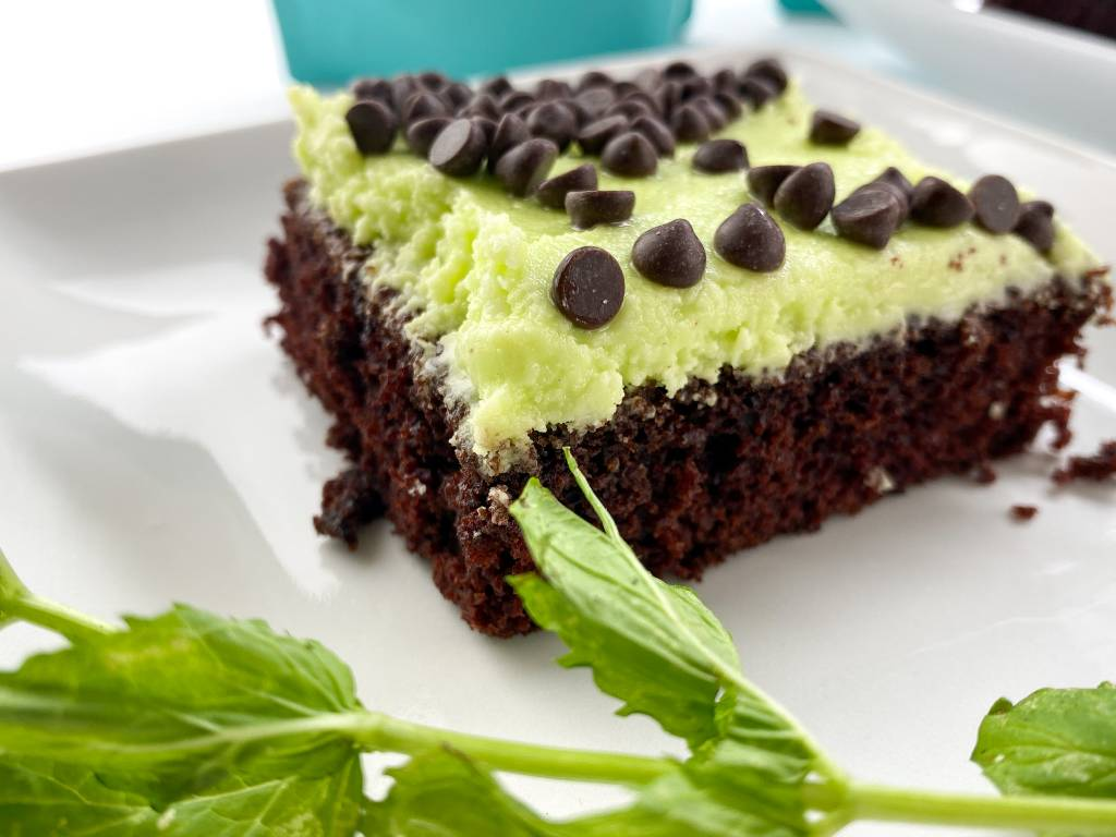 Kate's Safe and Sweet Mint Chocolate Cake Bars