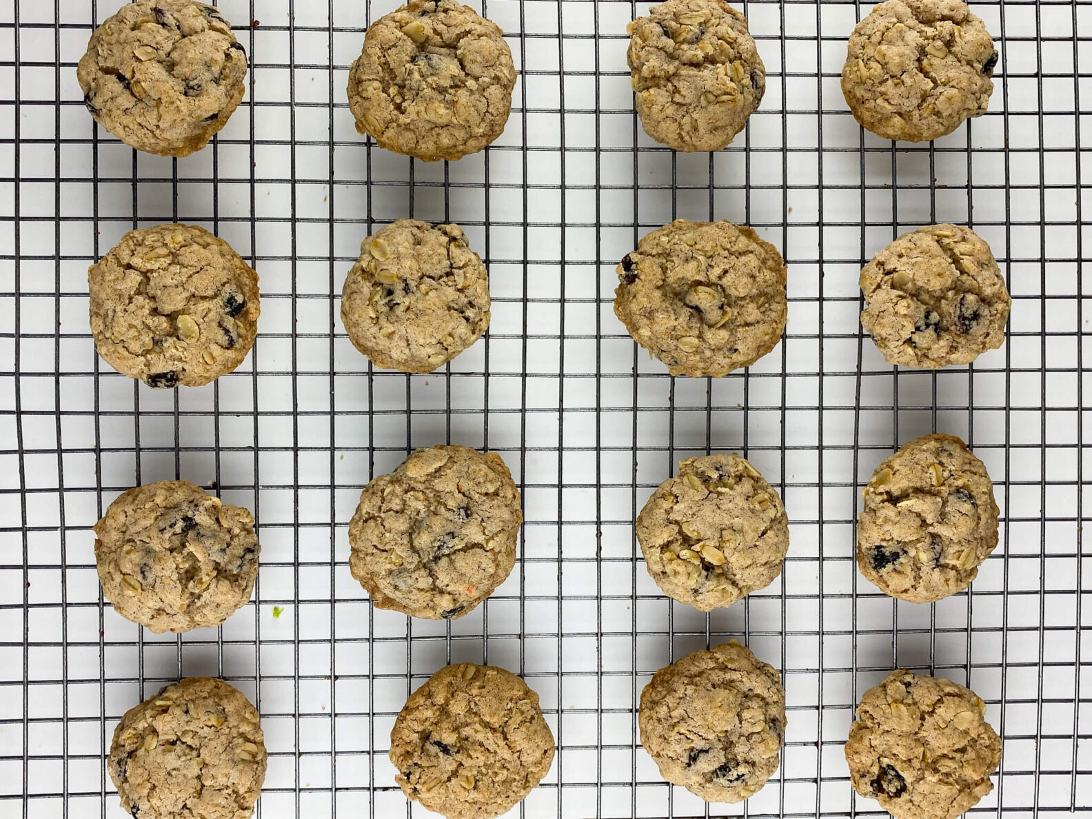 Kate's Safe and Sweet - Oatmeal Raisin Cookies on Tray