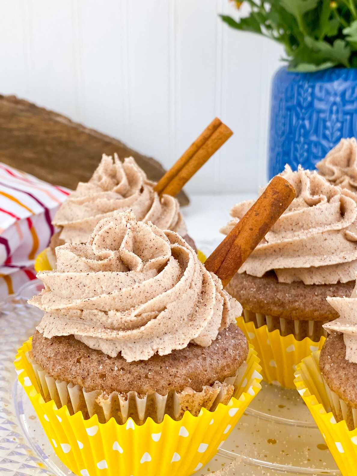 Kate's Safe & Sweet - Snickerdoodle Cupcake with Cinnamon Stick
